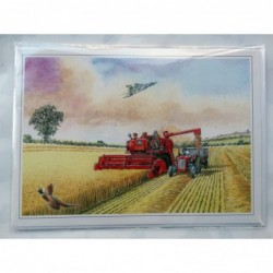 To A Fabulous Friend Champagne Glasses Bunting Design Modern Happy Birthday Card