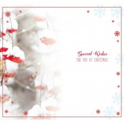80th Birthday Wishes Sister...